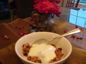 Cranberry Granola recipe with yogurt on top.